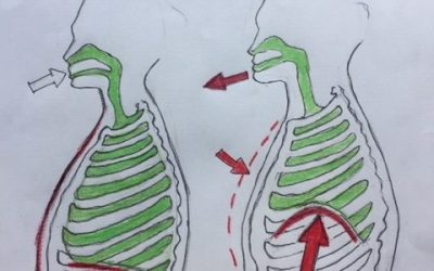 Breathing dysfunctions, ribs and pain